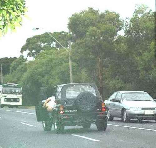 Image d lire drole sur les voitures - Image voiture drole ...